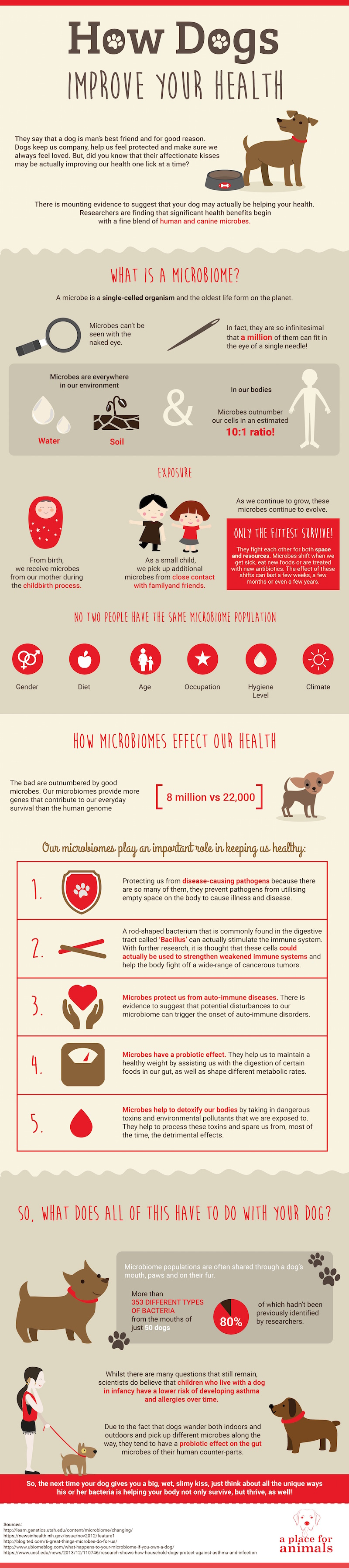 Infographic Title: How Dogs Improve Your Health